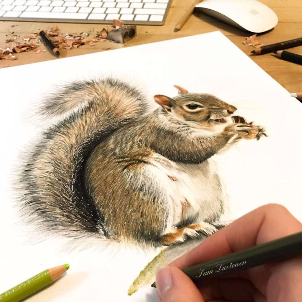 SamLuotoneSquirrel