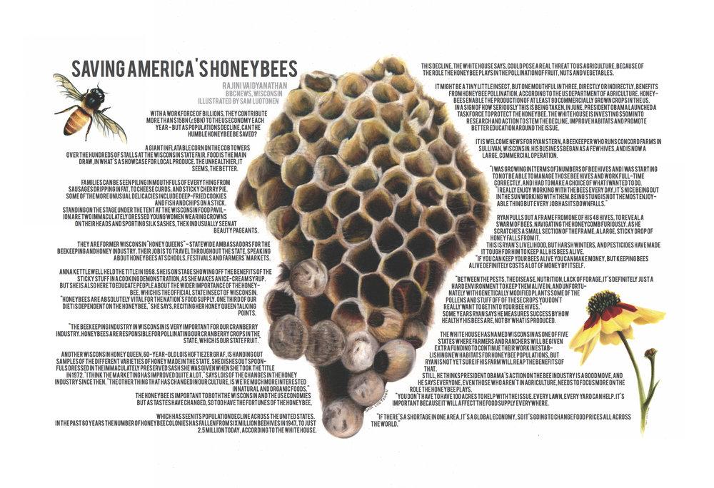 BeeArticle.jpg