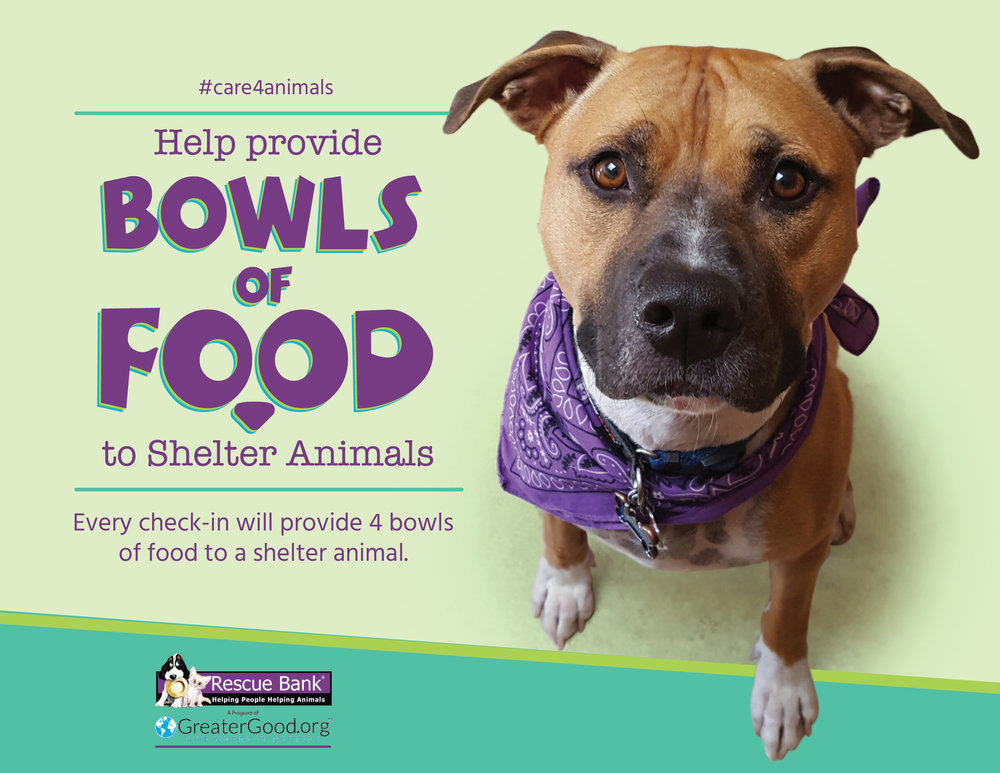 This September, IG location tag, check-in or review on Facebook, Steamtown Yoga will help provide 4 bowls of food to a shelter animal. We're working with Causely and the Rescue Bank to make it happen. You can add #care4animals when you check in to promote the cause. For more information about this month's charity, check out www.rescuebank.org