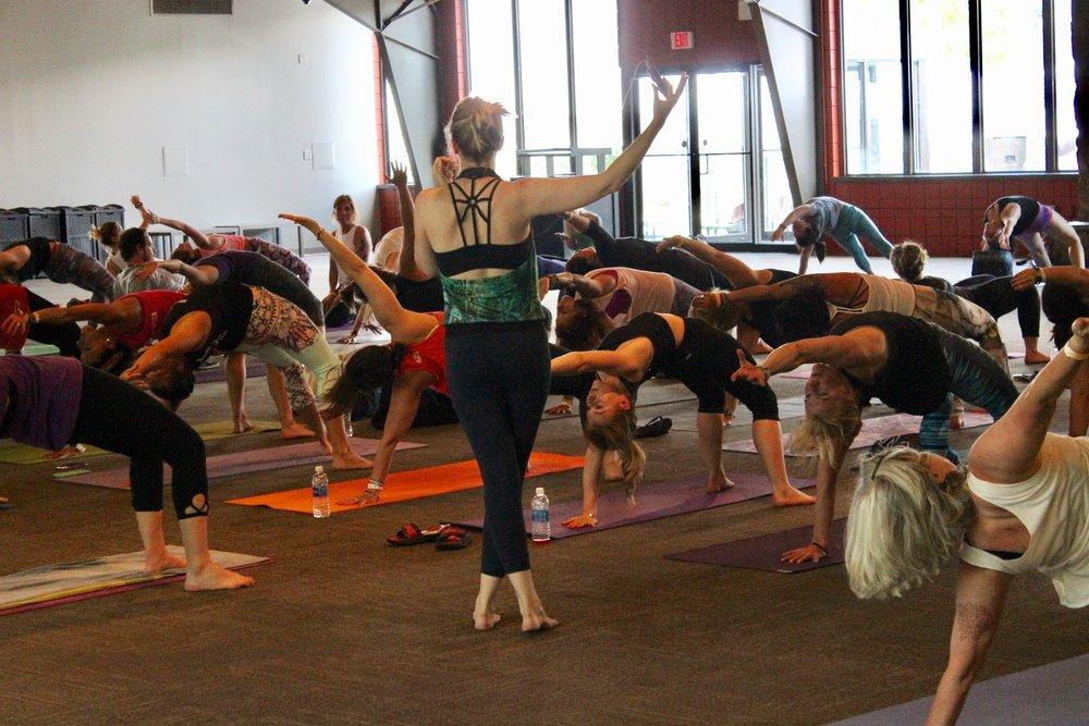 yoga festival vinyasa.jpg