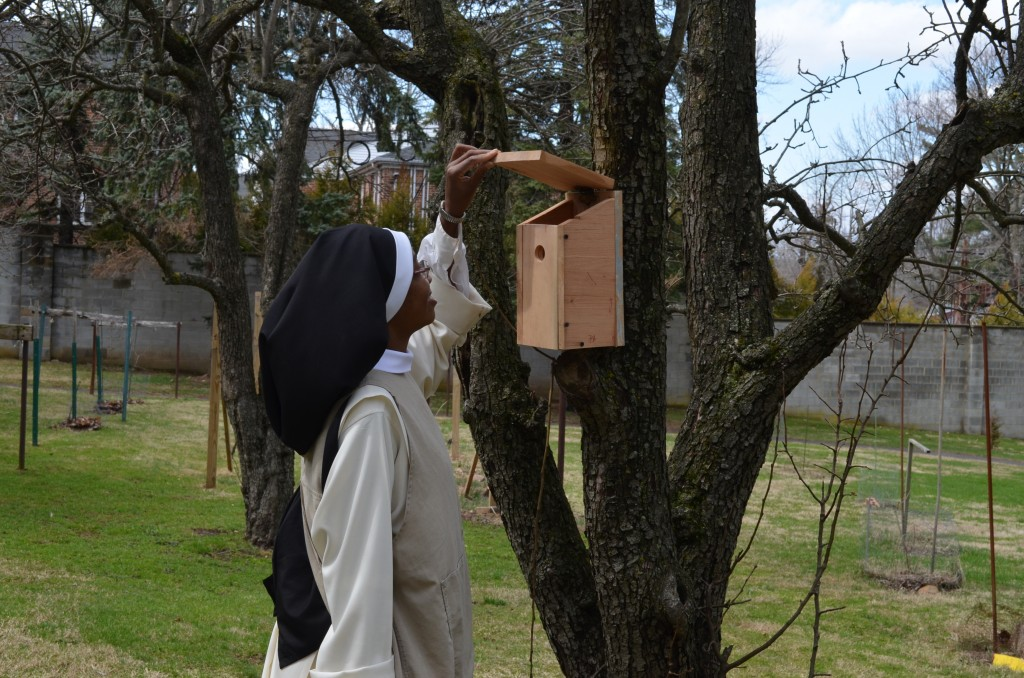 Sr. Mary Jacinta checks the new bird house. Has anyone moved in yet?