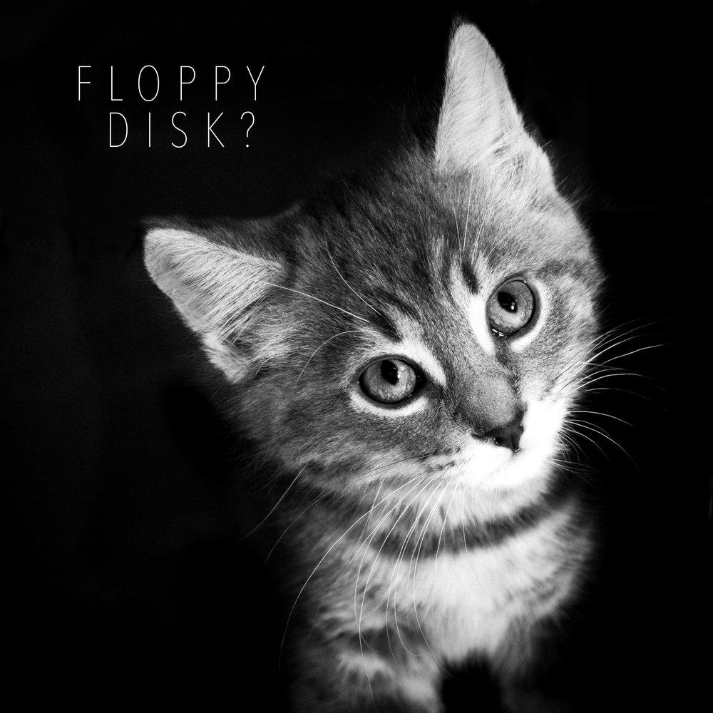 Floppy-.jpg