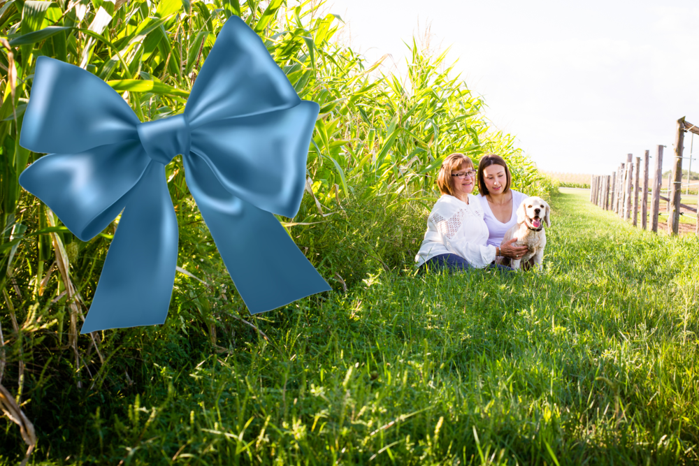 Beth Photography Gift Certificate.png