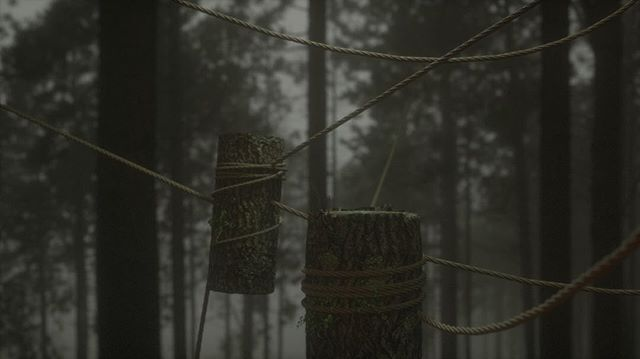 Forest. Pillars. . . . .  Thanks to Simon feilder rope presets, Maxtextures for wood ends and David chumilla liccioli  for bark. #mdcommunity #renderzone #c4d #octane . #tree #3Dart #digitalillustration #conceptart #concept #render #octanerender #art  #instart #abstract #3D #illustrator #artist #dailyart #abstract#cinematic #setdesign #architecture #forest #mgcommunity #setdesigner #artdepartment #cinedesign