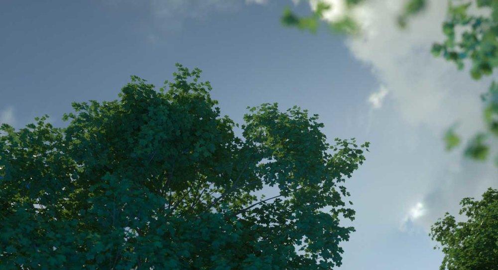 Laubwerk Flora