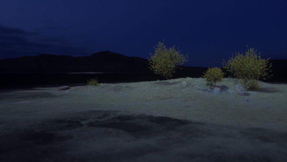 shrub shake0260.jpg