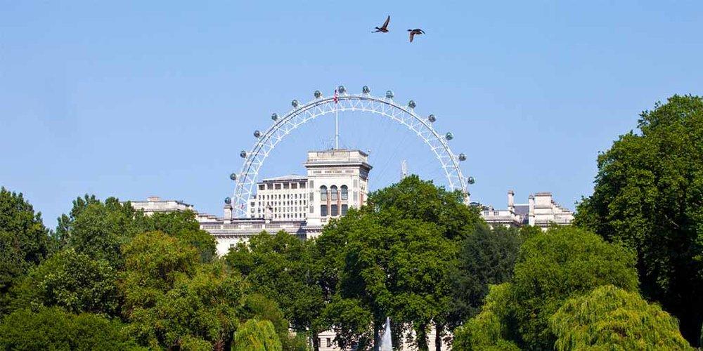 London TGF 3.jpg