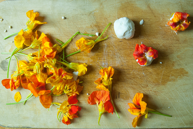 How to Forage (and Eat!) Nasturtium Flowers   BY  CHANTAL AIDA GORDON    /   25 APR 2013