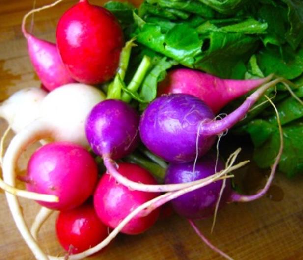 easter egg radish.jpg