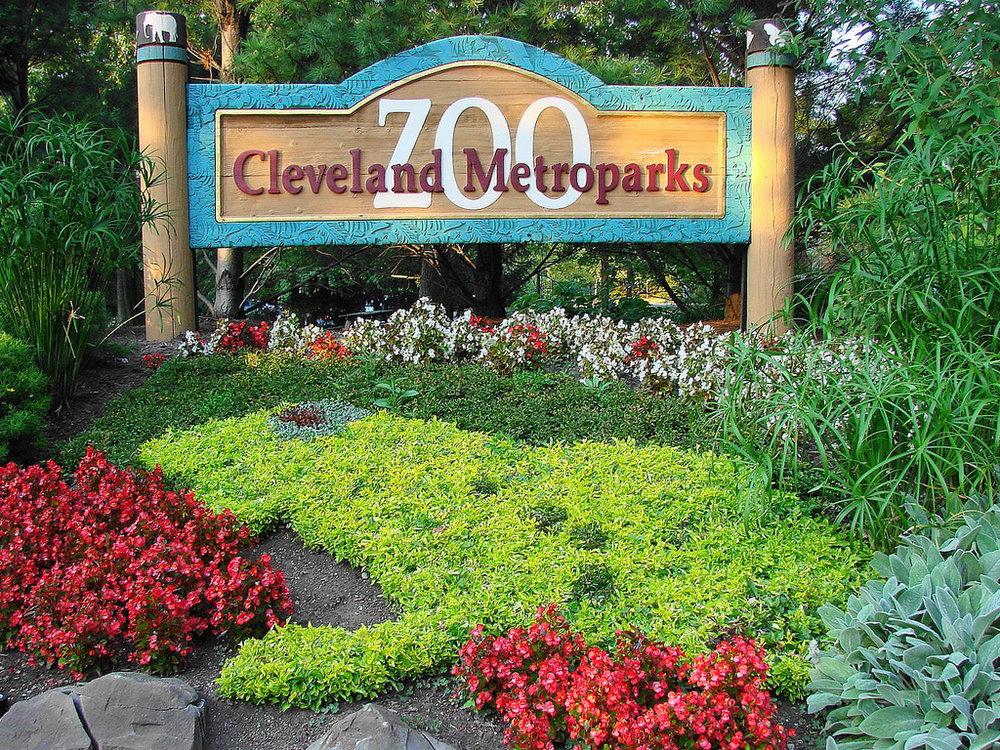 HIA cleveland zoo.jpg