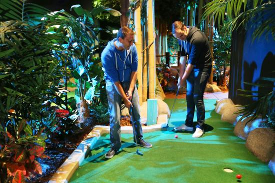 treetop-adventure-golf.jpg