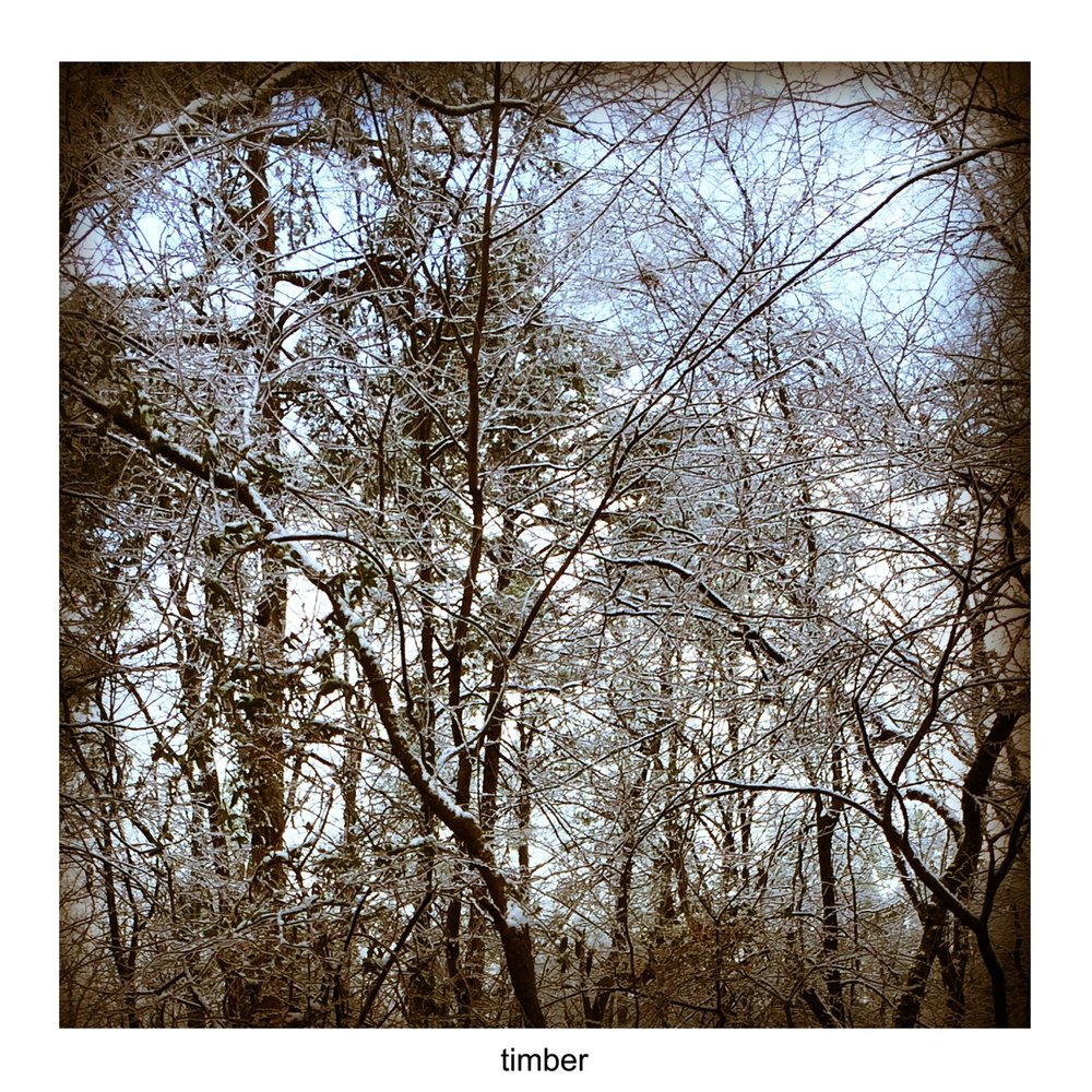 Timber EP (2015) - listen1. Home at last2. Green wire3. L'Ombre De L'amour4. Blame5. Ghost