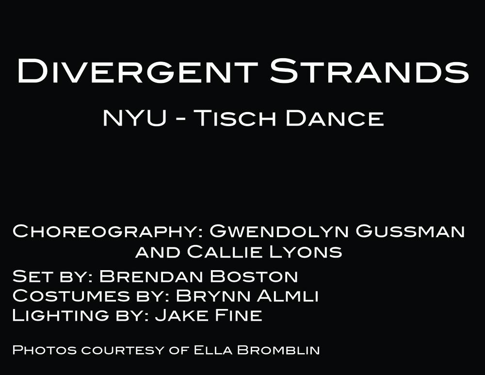 DivergentStrandsTitleCard.jpg
