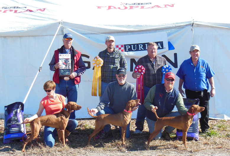 National Quail Derby Classic Back: Judge: Peter Coppens, Steph Fidler, Brian Gingrich Judge: Mark Johnson, Brian Fidler, Andrew Fidler, Carrie Syczylo, Robert Tomczak. Front: Carlie Syczylo with the winner Fiddler's Big Finale, Ron Chenoweth with Red Bangert's Red Baron, and Mikayle Syczylo with Fidler's CK Ragin Bull.