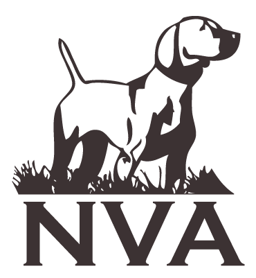 National Vizsla Association