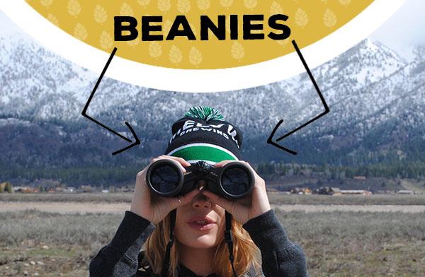 beaninesbase_v1.jpg
