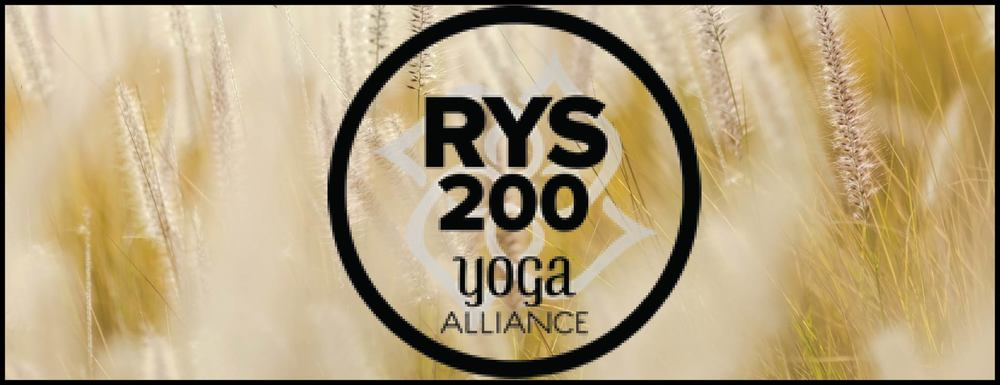 200 Hour Teacher Training Program Yoga Alliance Customized