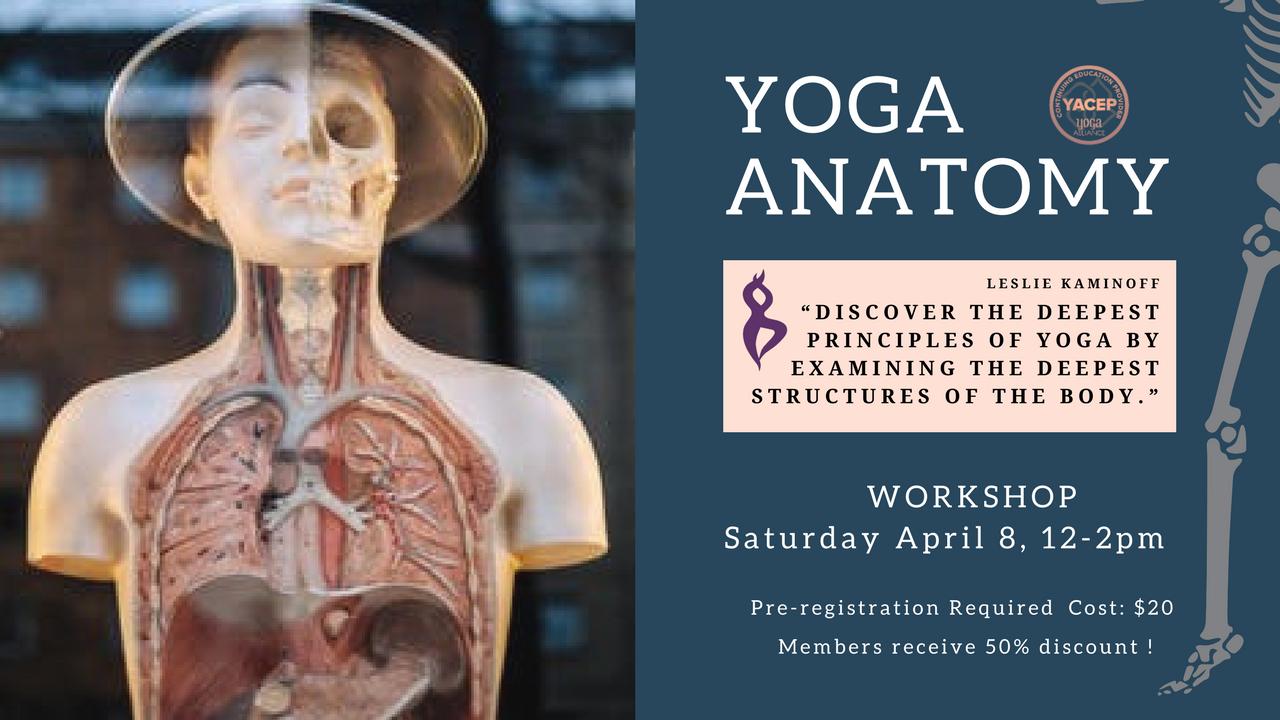 Yoga Anatomy — Essencia Yoga Teacher Training