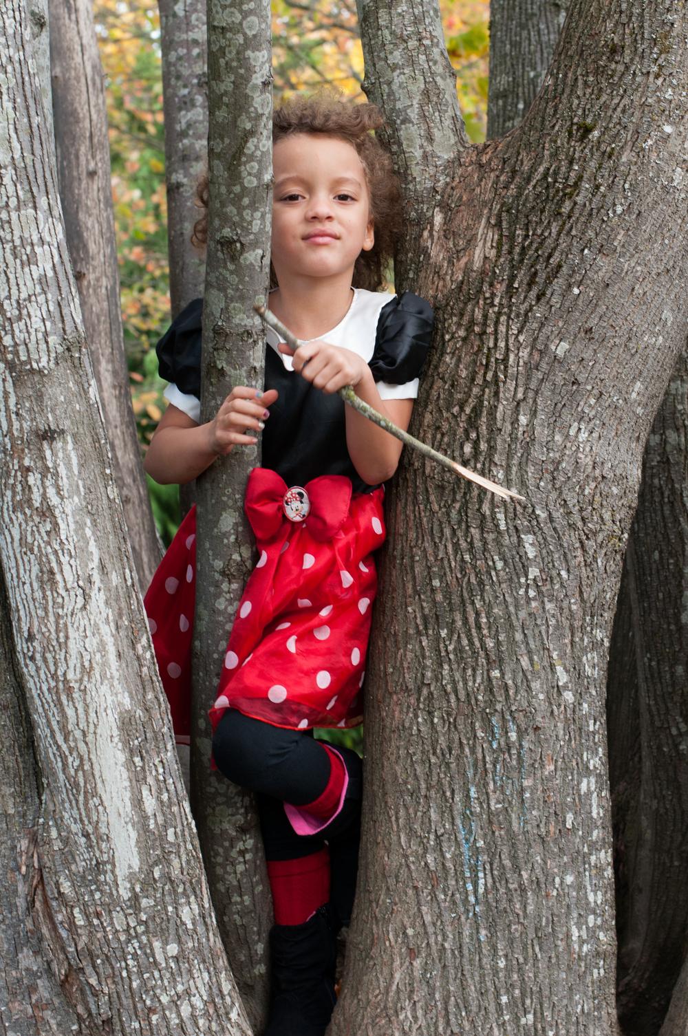 Tree Retreat