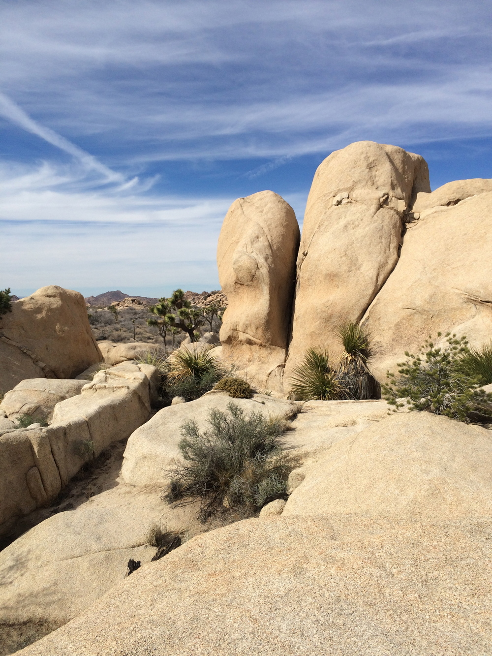 Flintstone Office - Joshua Tree