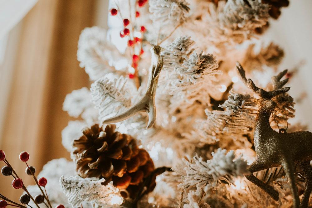 ChristmasHomeTeasers-37.jpg
