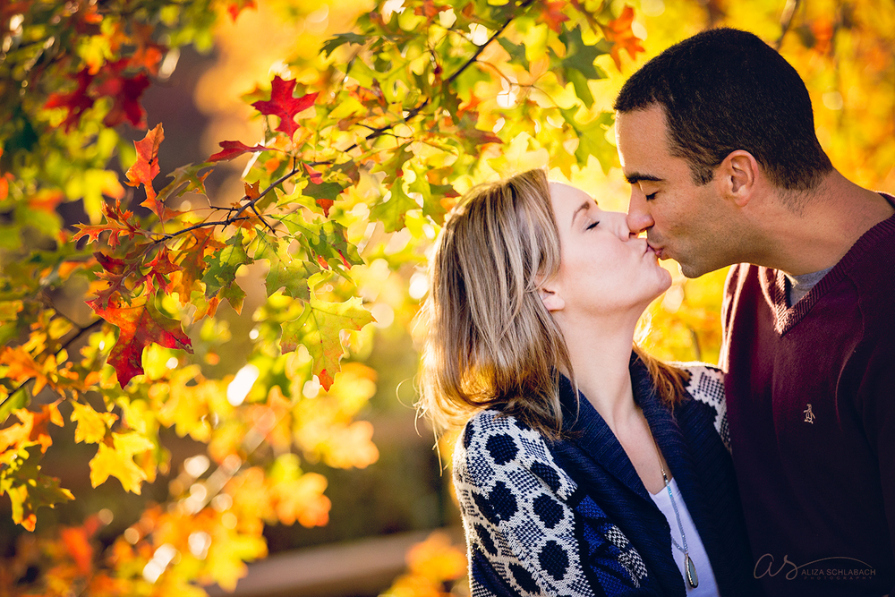 Photo of couple kissing under backlit fall leaves at Haverford College