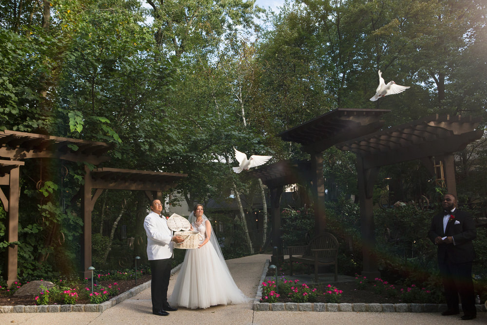 Photo of bride and groom releasing doves at The Pomme in Radnor