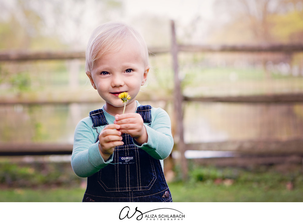 Photograph of a little boy with a dandelion at Haverford College Duck Pond