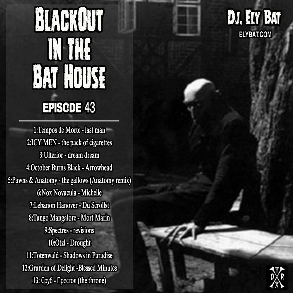 blackout in the bat house 43.jpg