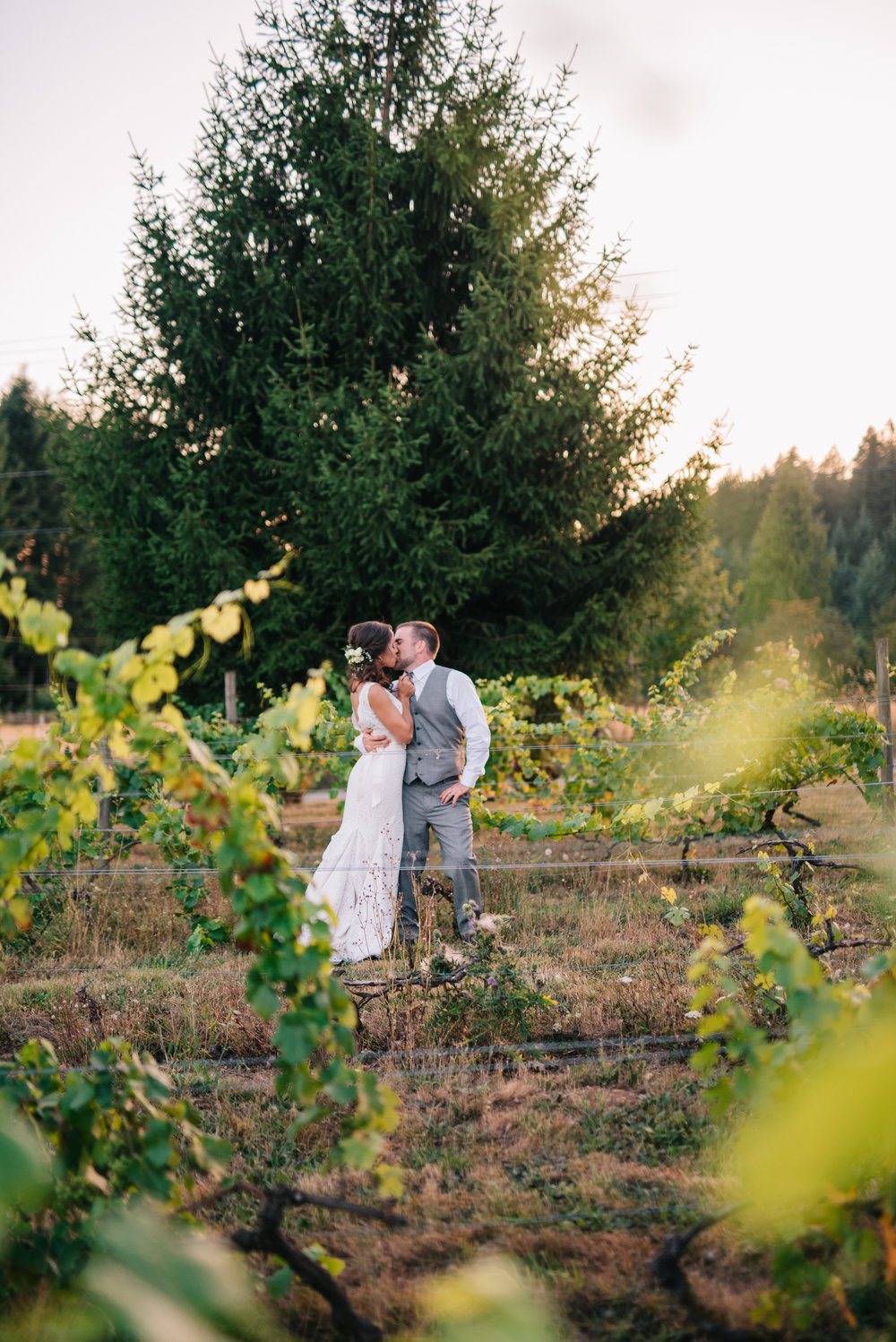 Wedding at Rusty Grape Vineyard Portland, Oregon