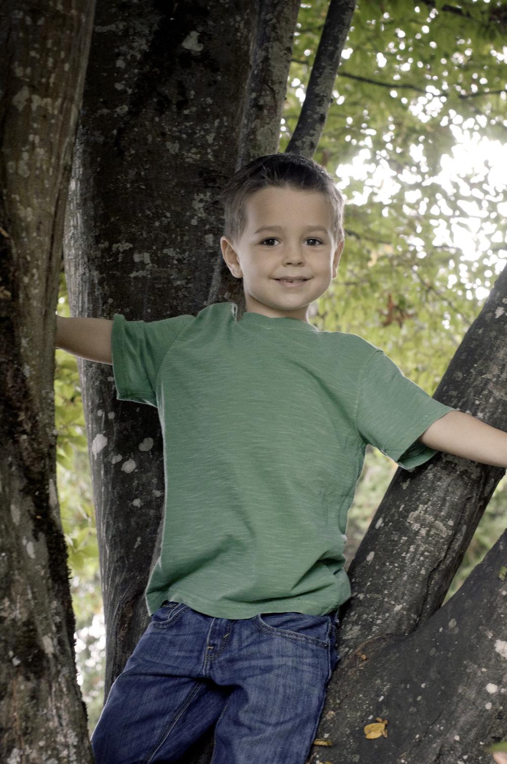 McBride Family-Truman Tree.jpg