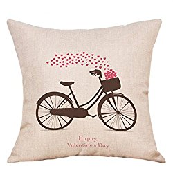 vday bike pillow case.jpg