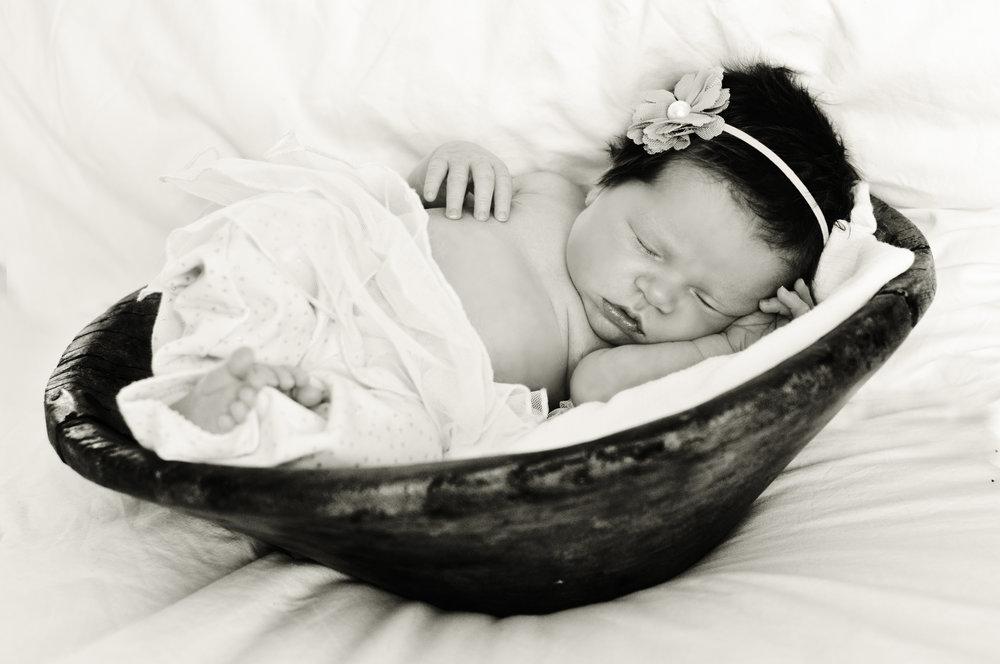 newborn portrait session prop ideas etsy
