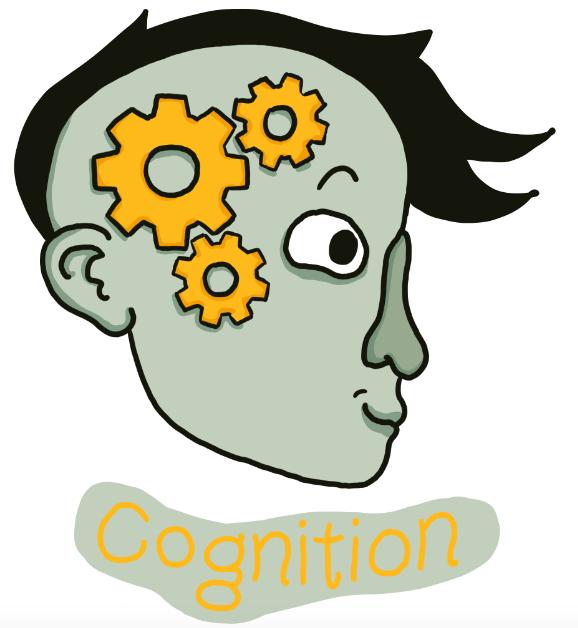 Tory Woollcott Cognition