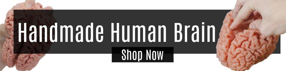 Handmade Human Brain Shop Now.jpg