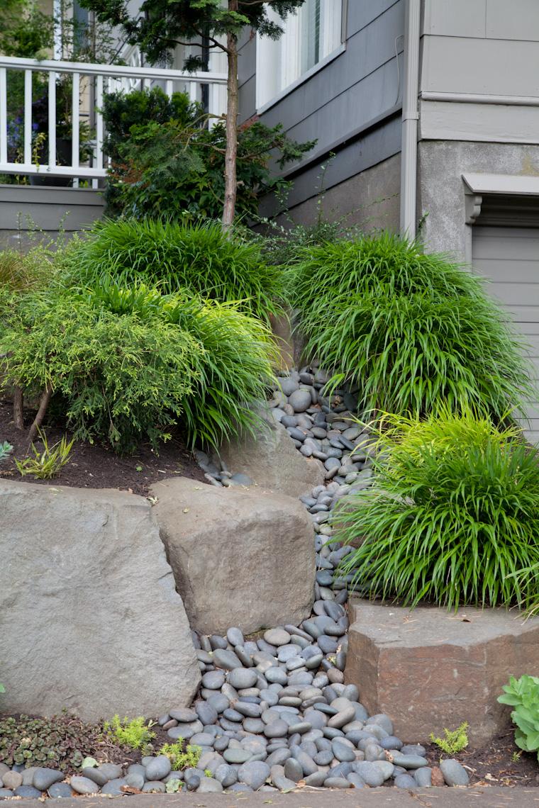 hakuna japanese grass - Gallery — Sticks And Stones Landscape Design