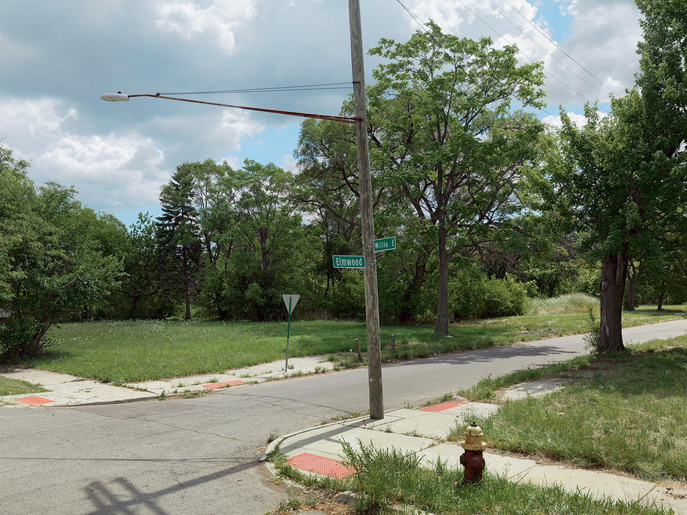 Corner-of-Elmwood-and-Willis,-Eastside,-Detroit-2015_6589723.jpg
