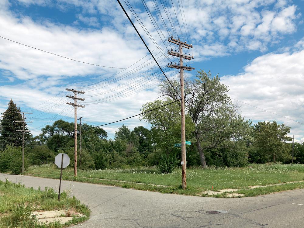 Corner-of-Sylvester-and-McClellan,-Detroit-2015_6589828.jpg