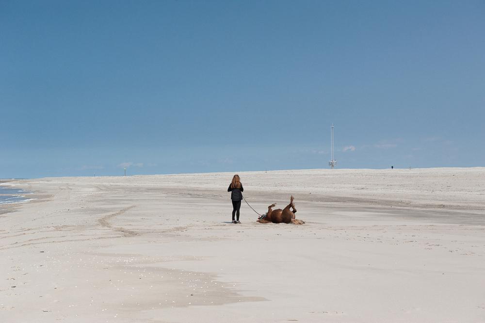 Sandmotor-03.jpg