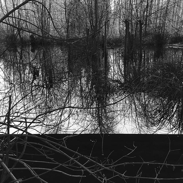 #landscape #altered #blackandwhite #bnw #abstract #terratoryjournal #terratory www.terratory.org