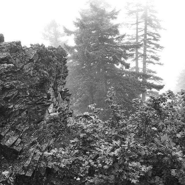 #landscape #altered #ryannemethphoto #blackandwhite #bnw www.terratory.org