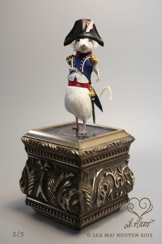 Napoleon Bonaparte 2/5