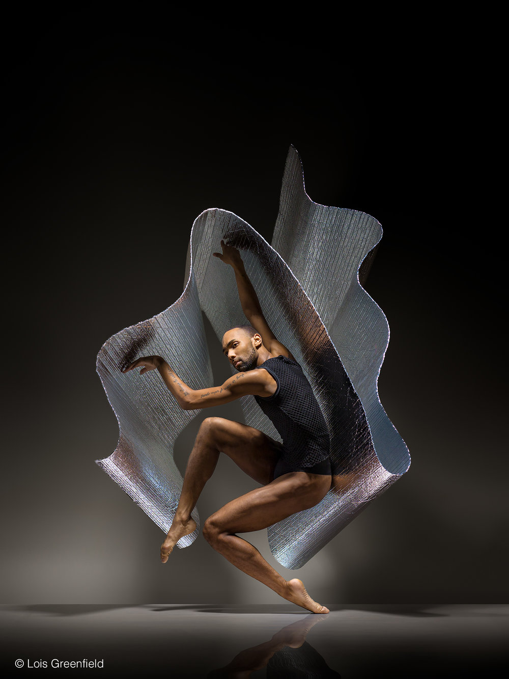 SEAN CARMON of the ALVIN AILEY DANCE THEATRE