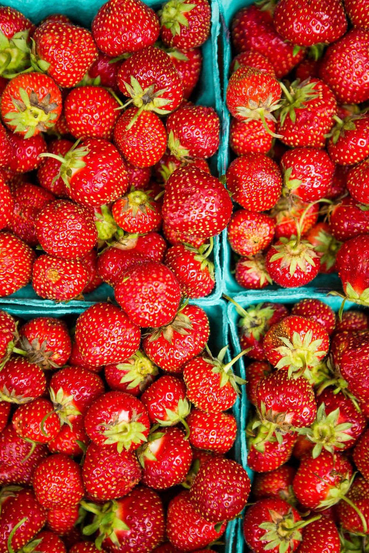 2015_southloop_farmersmarket_lowres-075.jpg