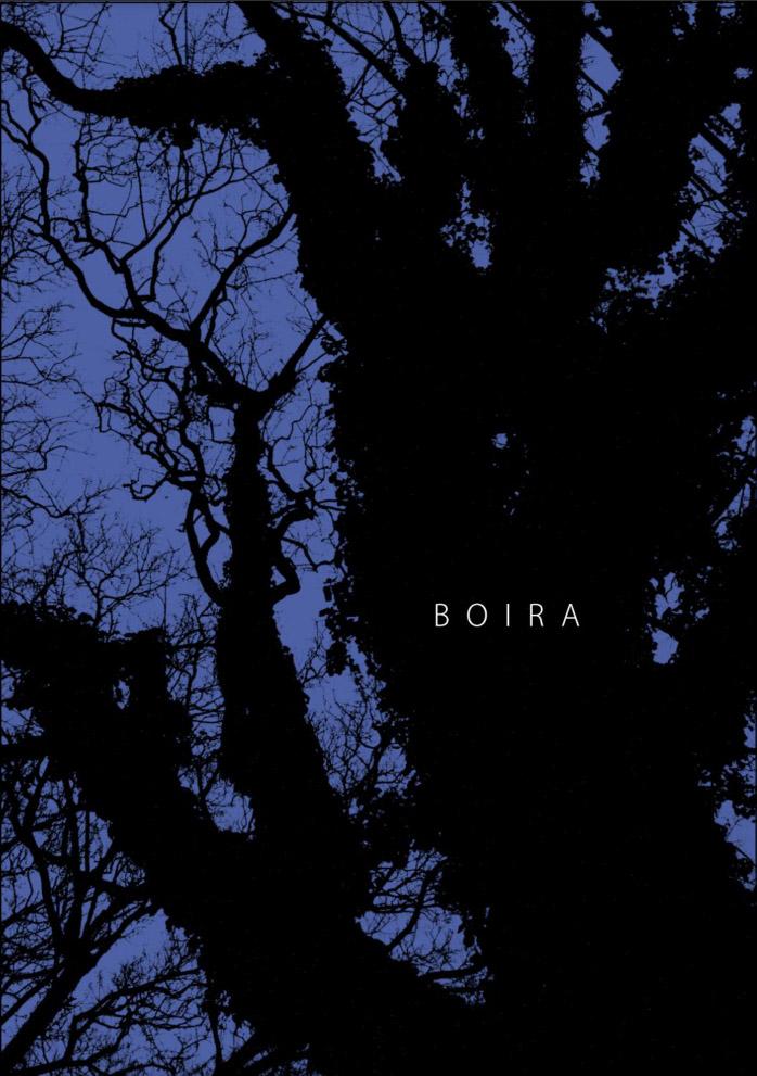 BOIRA001.jpg