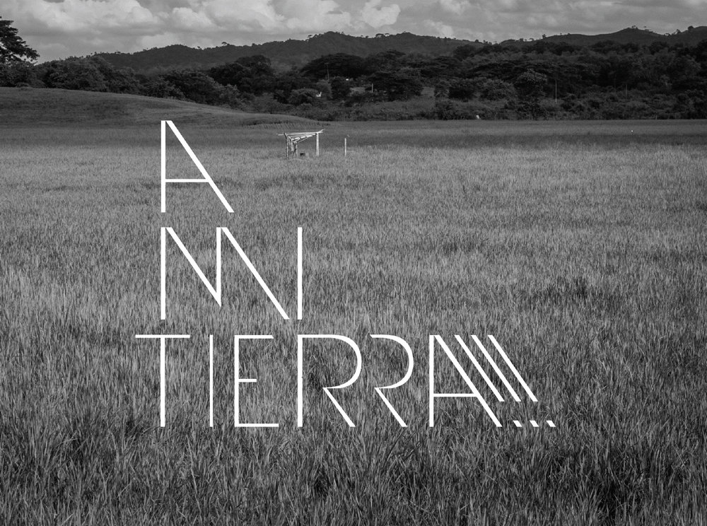 Alatierra001.jpg