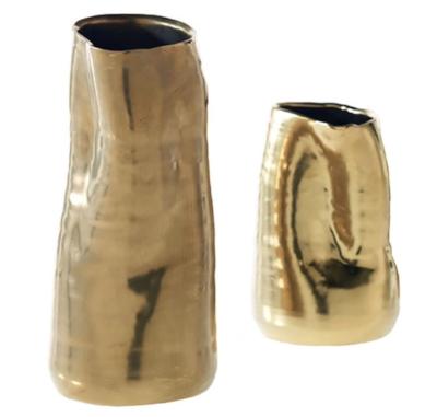 Houzz Tegan Vases.jpg