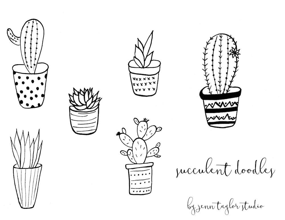 Succulent Doodle