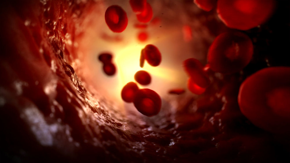 blood_banner.jpg
