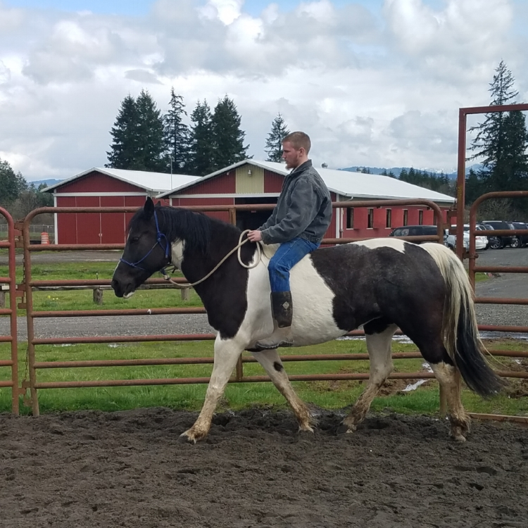 Christian riding bareback in round pen at Silver Buckle Ranch.